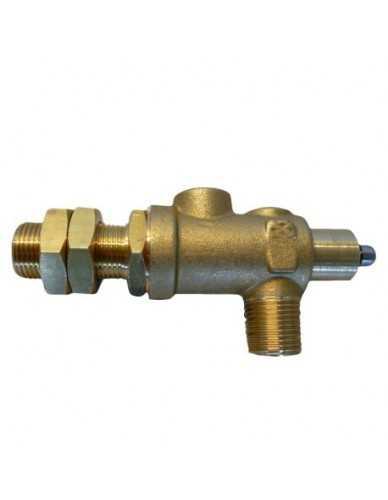 La Carimali steam valve