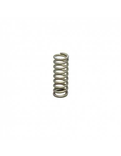 Elektra steam water valve spring