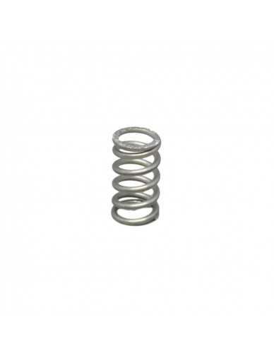 Gaggia valve spring