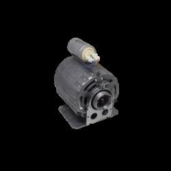 Bezzera - Motor und pumpe