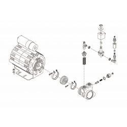 Bezzera BZ40 - Motor und pumpe
