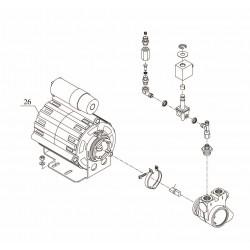 Bezzera BZ35 - Motor und pumpe