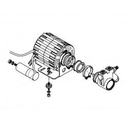 Bezzera Galatea - Motor and pump
